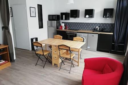 Bel appartement renové - centre ville