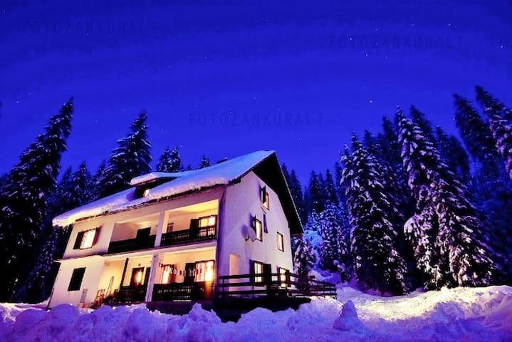 Cottage  Pokljuka - Krnica - Chatka w górach