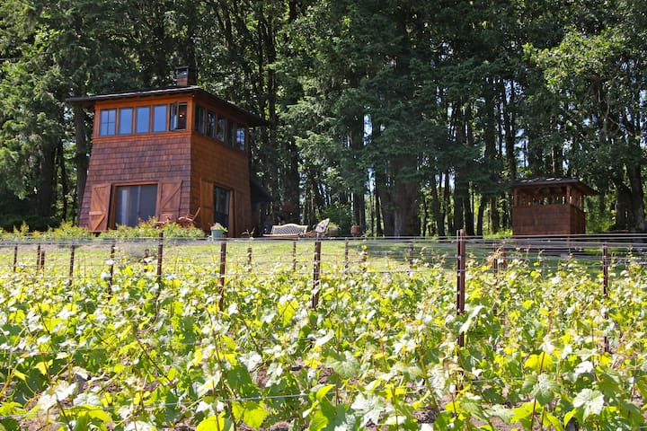 Great Cabin- Heart Of Wine Country! - Gaston