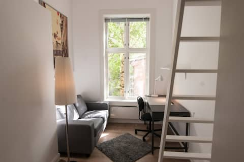 Loki Room, Best place to stay in the heart of Oslo