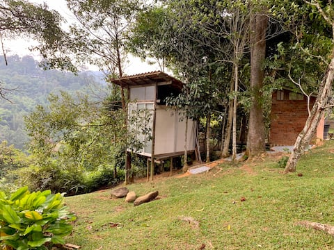 Camp d'arboriculture durable à la ferme Plateau @Janda Baik