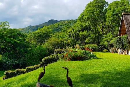 Wide Horizons Mountain Retreat - Mounatin View