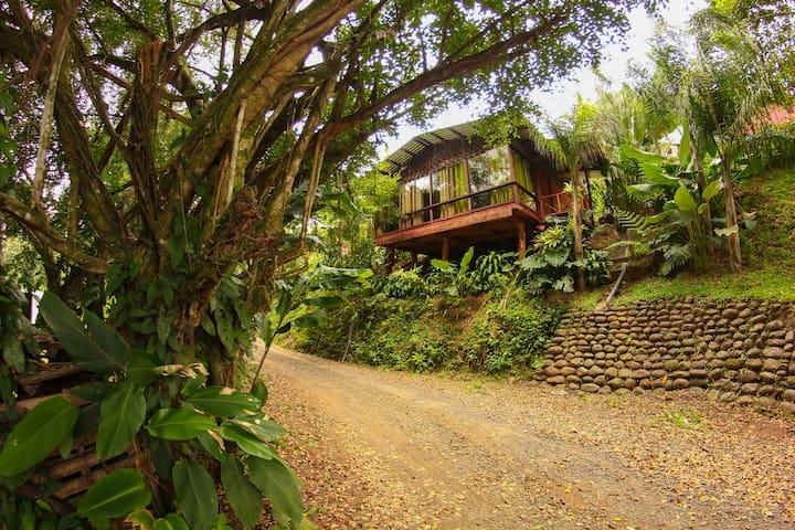 Arenal Tree Cabin-La Fortuna - San Carlos - Houten huisje