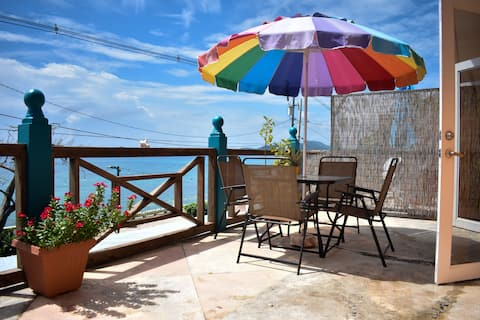 Flamboyan Guesthouse Ocean Front Room #1