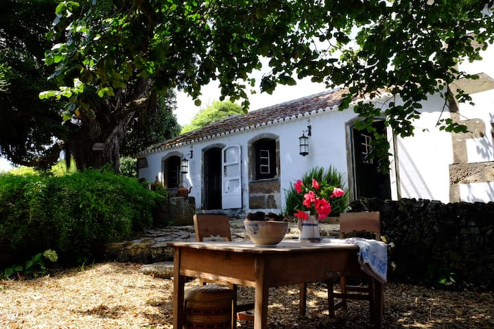 Delightful family house in Azores seaside village - Porto Martins - Dom