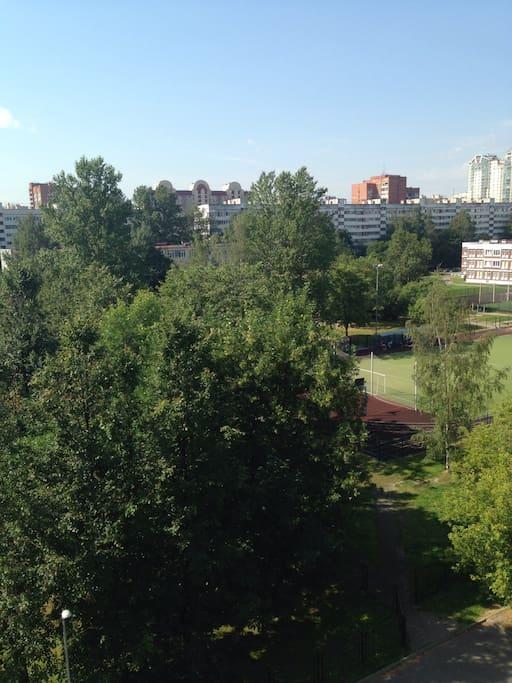 Вид на просторный зеленый двор, под окнами поют птицы/ green yard view, birds are singing near the windows