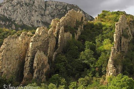 Тихое и спокойное место для отдыха - Враца - Casa