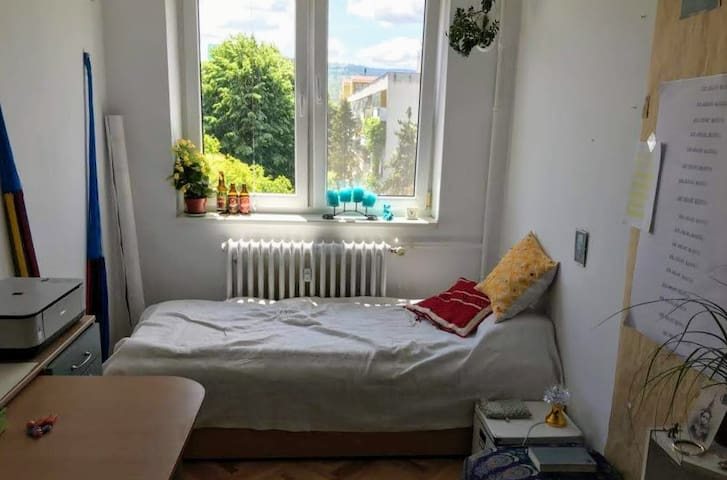 Sunny room in a friendly apartment
