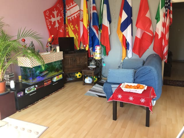 Top location and comfort - Strasbourg - Guesthouse