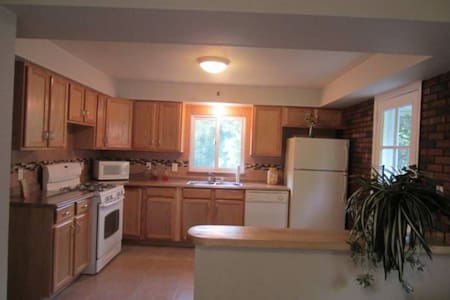 SUPER NICE UPDATED HOUSE w/TIKI BAR - PITTSBURGH - Pittsburgh - Hus