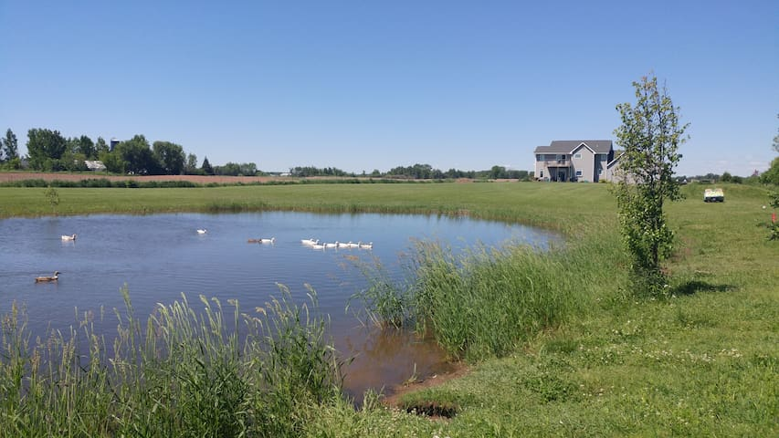 RV and Camper sites at The Pond House