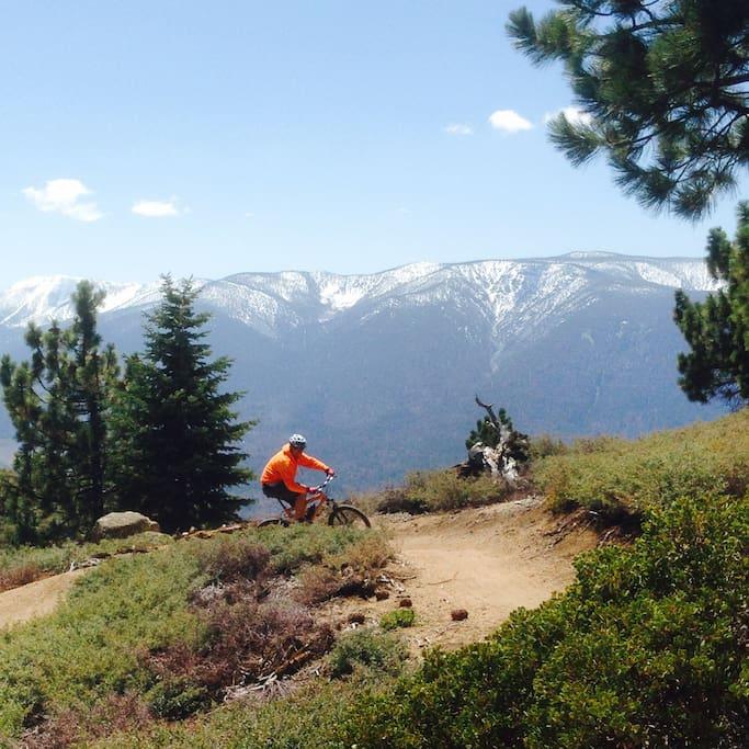 Mountain biking at the top of Summit