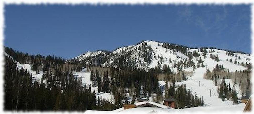 Stunning Mtn views, ski-in ski-out - Solitude - Apartment