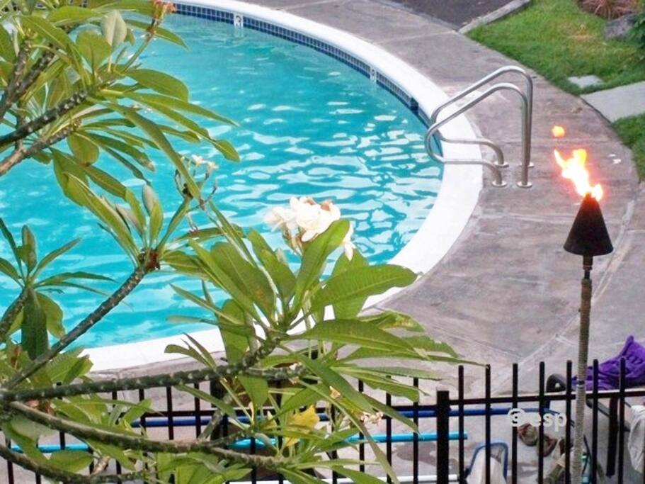 Tiki torches and plumeria flowers abound in your lush tropical pool view from your own lanai
