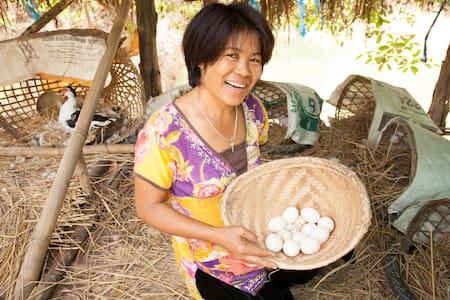 Buti farm homestay commune 1 of 4 - Doi Saket - Chatka