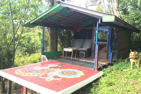 This cute little hut at Hedonisia Hawaii Community is at the highest point on the property. To rent this hut you must be relatively fit as it requires a short hike up a hill. Once you get there you enjoy peace and privacy overlooking the ocean.
