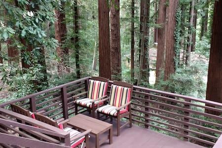 Rustic Charm  - Fabulous Hilltop Views of Redwoods