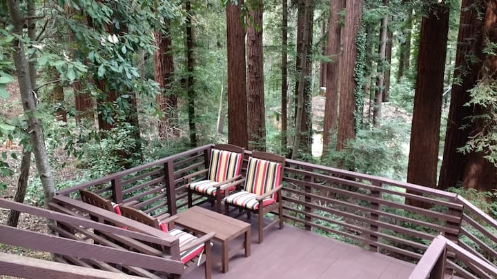 Rustic Charm  - Fabulous Hilltop Views of Redwoods