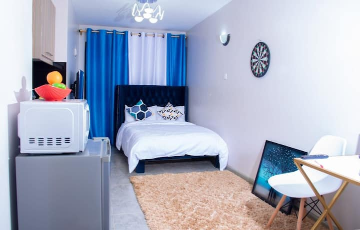 Luxury spacious studio apartments near JKIA