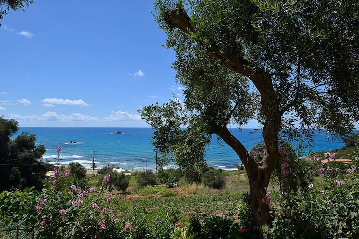 Maistro Apts Kontogialos Pelekas Beach Corfu