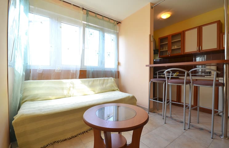 Apt Dejan in Pula near the beach and Max City Pula