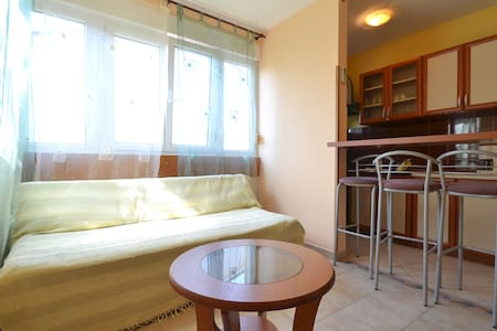 Apt Dejan in Pula near the beach - Pula - Daire