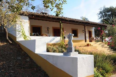 Quinta do Colmeal - Lavanda - Vila Vicosa