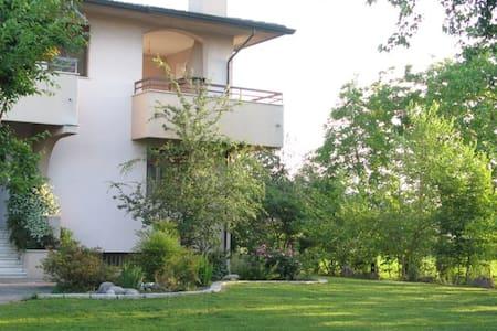 Appartamento con giardino - Pozzoleone