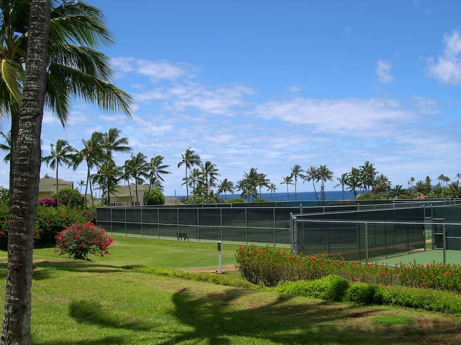 Tennis courts for our guests, small court fee applies