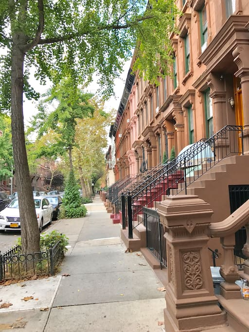 Historical Brownstone streets