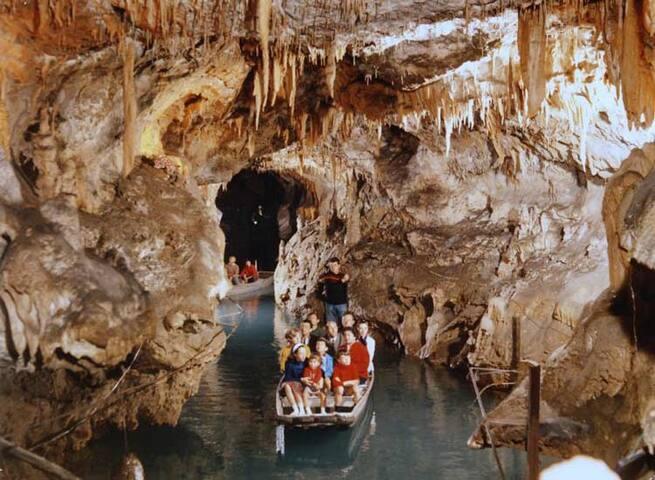 Les Grottes de Médous (à 10 minutes direction Bagnères)
