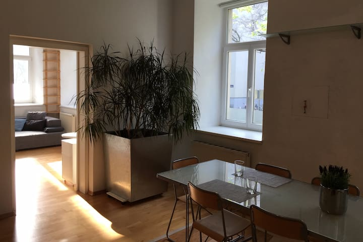 Charming, sunny apartment in the heart of Vienna