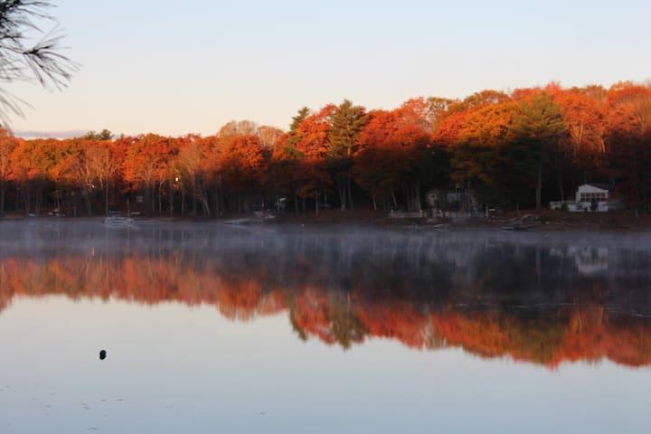 Amazing Fall colours