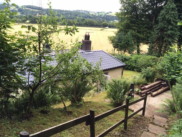 Diddosfa, Cosy Cottage in Snowdonia. - Conwy - House