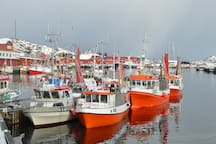 Winther fisheri after cod