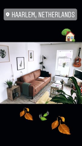 Cozy Apartment Haarlem Centre