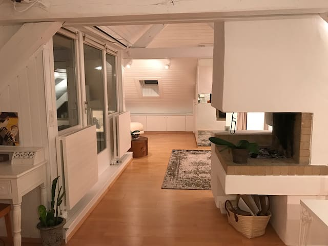 Cozy attic Loft - 10 min to HB - Zurych - Loft