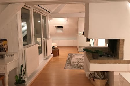 Cozy attic Loft - 10 min to HB - Zürich - Loft