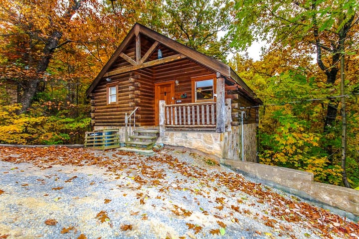 Beary Cozy Cabin - Sevierville - 一軒家