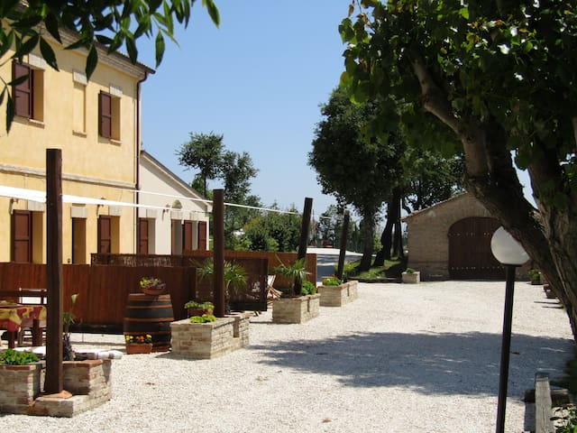 "Tipico casale marchigiano "" Ulivi "" - Monte porzio - Apartament"