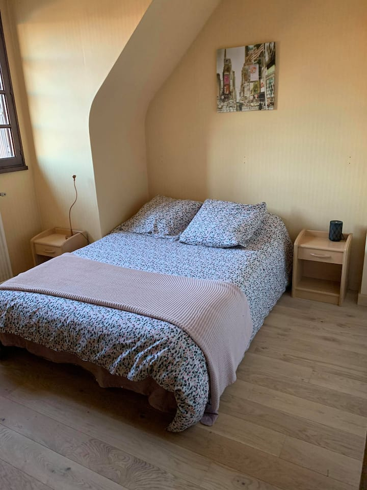 Loue chambre dans une maison Rennaise.