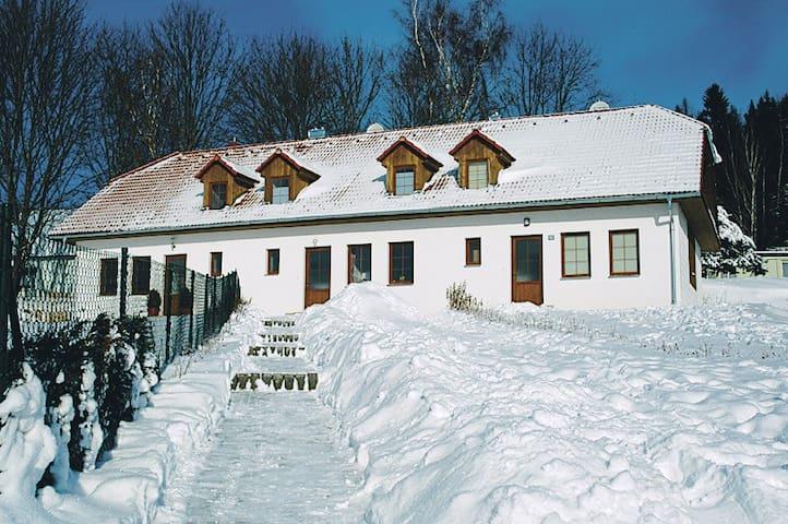 Уютный дом на озере в южной Чехии. - Přední Výtoň