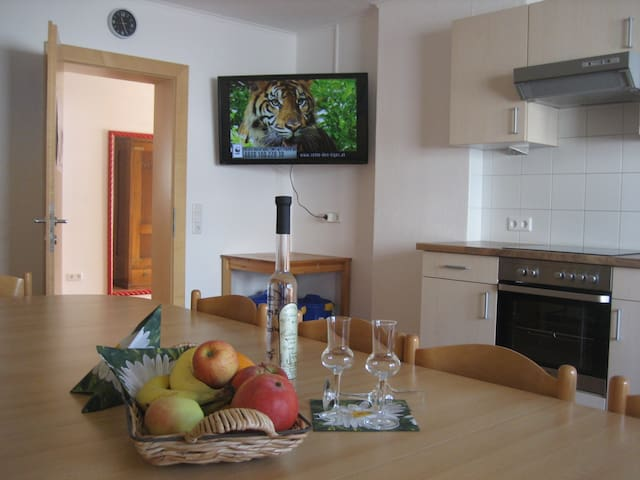 Spacious and Quiet Home with View - Ramsau im Zillertal - Apartment