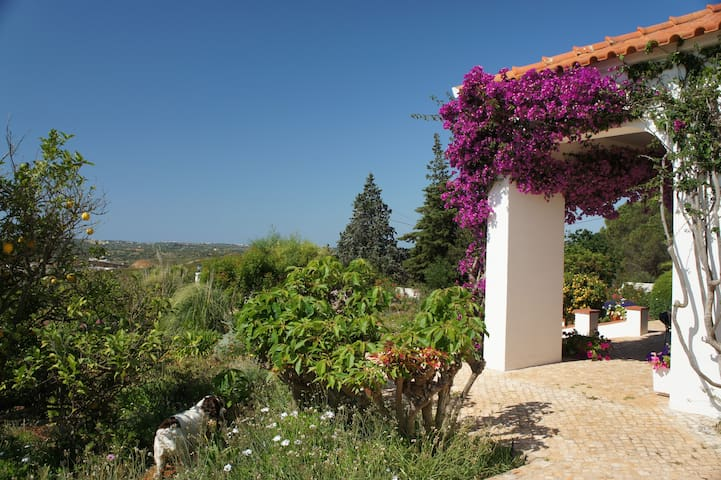 B&B,Private pool in garden,x2 Rooms - Llacs - Bed & Breakfast