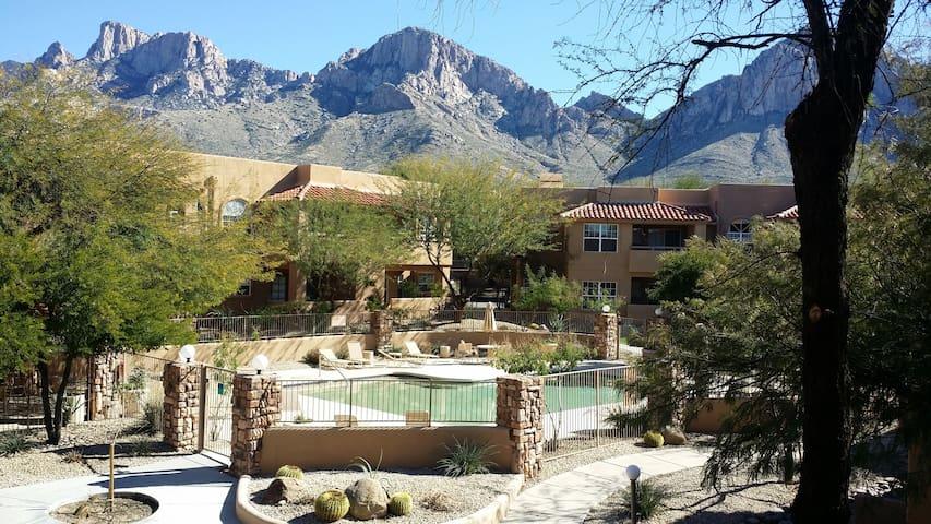 Upscale Villa in Paradise - Oro Valley - Lägenhet