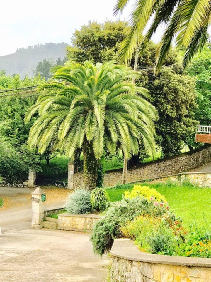 Jardín y acceso