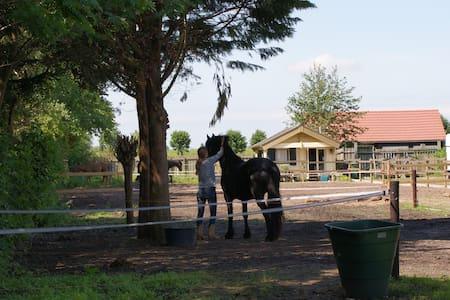 Unieke vakantiewoning ~ Slapen bij de paarden - Leidschendam - Almhütte