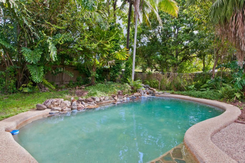Artist 39 s home with pool in multicultural cairns houses for Pool home show brisbane
