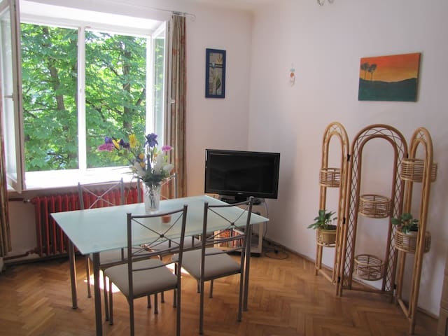 Beautiful studio for 2 in Warsaw! - 華沙 - 公寓