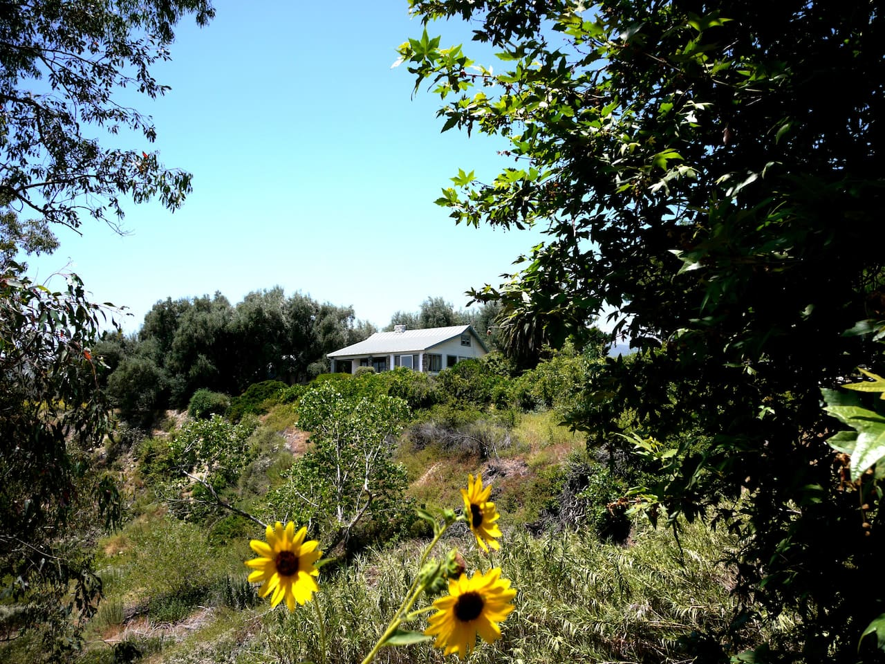 Tucked away next to an Olive grove you have the finest views of the mountains and valley below